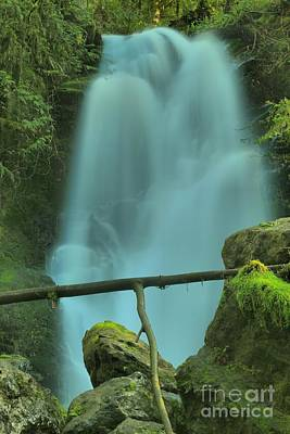 Photograph - Quinault Merriman Falls by Adam Jewell