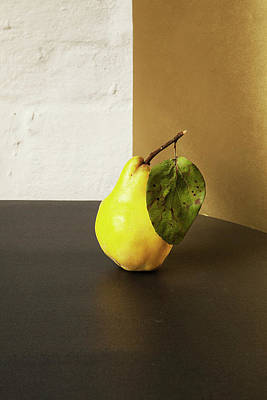 Pears Photograph - Quince by Happy Home Artistry
