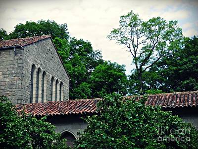 Photograph - Quince Trees At The Cloisters     by Sarah Loft