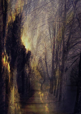 Susann Serfezi Photograph - Quo Vadis  -  Memory Lane by AugenWerk Susann Serfezi