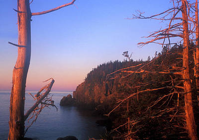 Quoddy Head State Park Photograph - Quoddy Head Ocean Cliffs by John Burk
