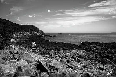 Photograph - Quoddy Head State Park by Alana Ranney