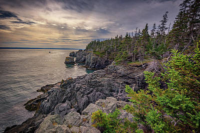 Quoddy Photograph - Quoddy Head State Park by Rick Berk