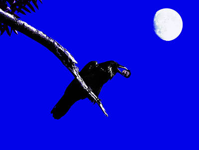 Quoth The Raven Nevermore . Blue Art Print by Wingsdomain Art and Photography