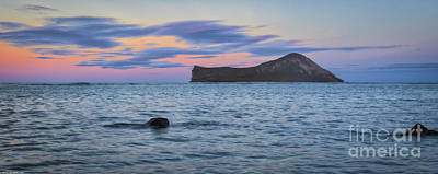 Photograph - Rabbit Island Sunset 4 by Mitch Shindelbower