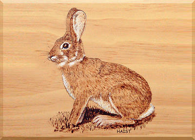 Pyrography - Rabbit by Ron Haist