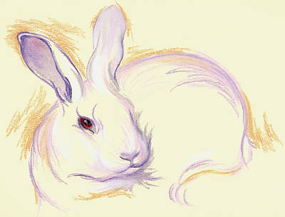Pastel - Rabbit With A Red Eye by MM Anderson