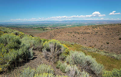 Photograph - Rabbitbrush And Kittitas Valley by Tom Cochran