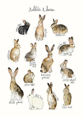 Bunnies Painting - Rabbits And Hares by Amy Hamilton
