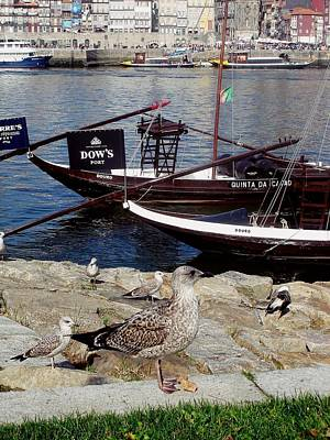 Photograph - Rabelo Boats On River Douro In Porto 06 by Dora Hathazi Mendes