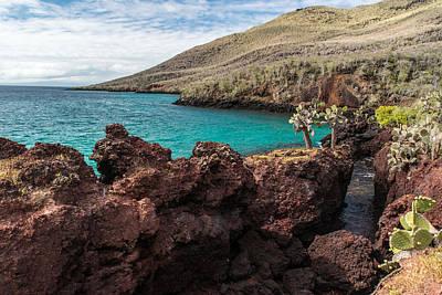 Photograph - Rabida Island Bay by Harry Strharsky