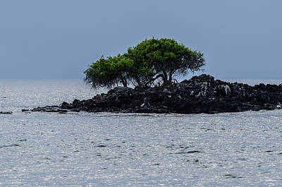 Photograph - Rabida Off-shore Island  by Harry Strharsky