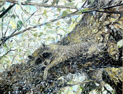 Painting - Racci Coon by Caroline Krieger Comings