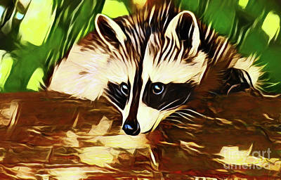 Photograph - Raccoon 20218 by Ray Shrewsberry