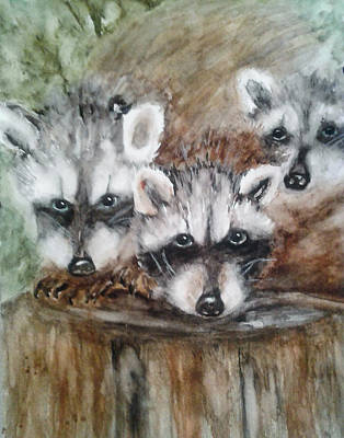 El Paso Art Association Painting - Raccoon Babies By Christine Lites by Allen Sheffield