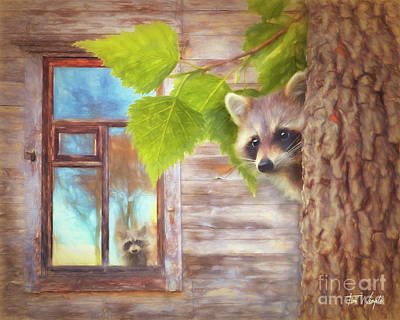 Raccoon Lookout Art Print by Tim Wemple