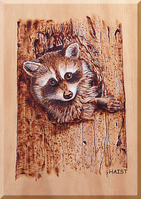 Pyrography - Raccoon by Ron Haist