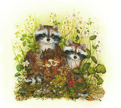 Raccoons  Art Print by Donna Genovese
