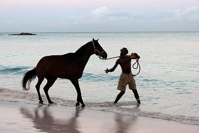 Photograph - Race Horse And Groom 1 by Barbara Marcus