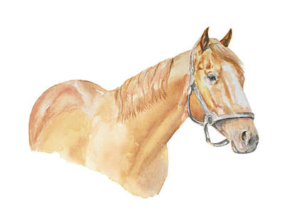 Painting - Racehorse by Elizabeth Lock