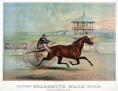Harness Racing Photograph - Racehorse: Goldsmith Maid by Granger