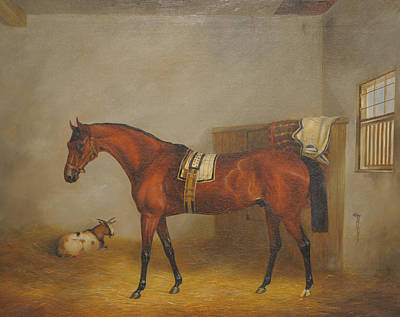 Loose Painting - Racehorse In A Loose Box by John Christopher