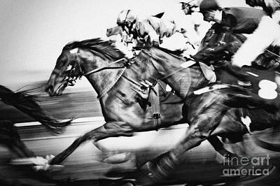 Photograph - Racing Horses by Dimitar Hristov