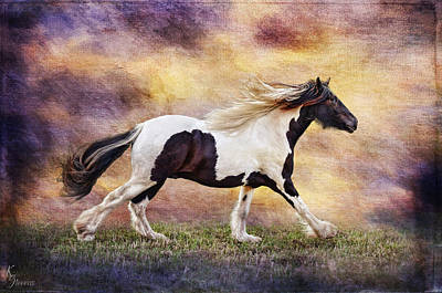 Gypsy Cob Digital Art - Racing Time by Kimberly Stevens