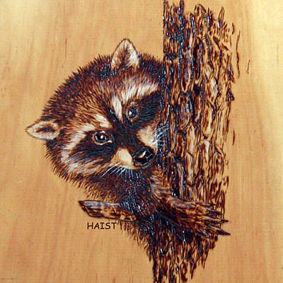 Pyrography - Racoon 2pillow/bag by Ron Haist