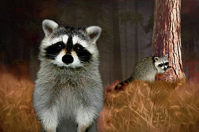 Photograph - Racoon Forest-painted by Ericamaxine Price