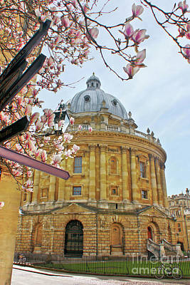 Photograph - Radcliffe Camera Bodleian Library Oxford  by Terri Waters