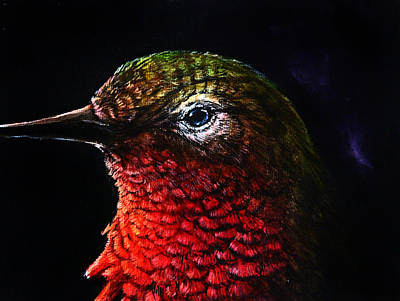 Hummingbird Painting - Radiance by Danielle Trudeau