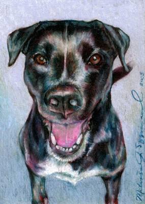 Pitbull Drawing - Radiant Radley by Melissa J Szymanski