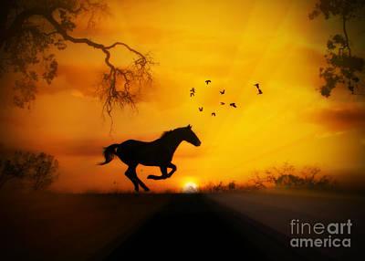 Radiant Run Horse And Sunrise Art Print
