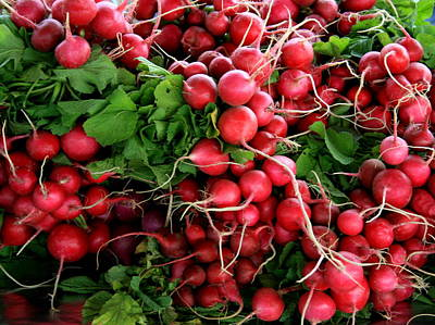 Photograph - Radishes by David Dunham