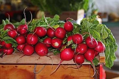 Photograph - Radishes II by Michiale Schneider