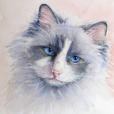 Ragdoll Cat Art Print by Bonnie Rinier