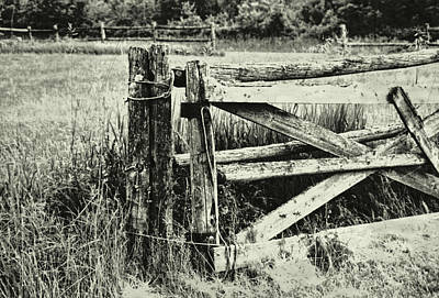 Photograph - Rail Fence by JAMART Photography