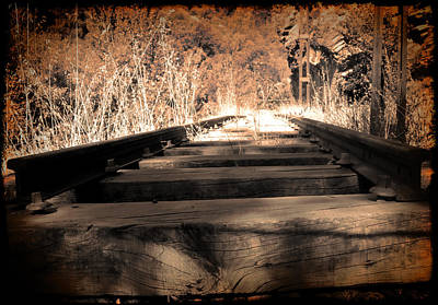 Photograph - Rail by Ivan Gomez