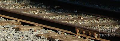 Photograph - Rail by Linda Shafer