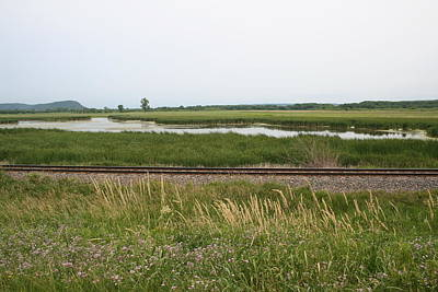 Photograph - Rail Refuge by Dylan Punke