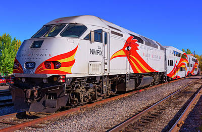 Photograph - Rail Runner by Stephen Anderson