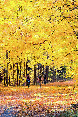 Photograph - Autumn Glory On The Rail Trail by Anita Pollak