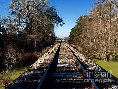 Photograph - Rail Trail In Color by Robin Lewis
