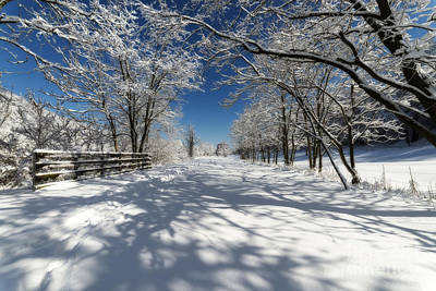 Photograph - Rail Trail On Snowy Day by Dan Friend