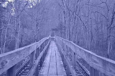 Photograph - Railroad Bridge by Trish Tritz