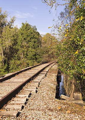 Photograph - Railroad In Conway South Carolina November Afternoon by MM Anderson