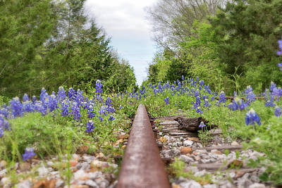 Photograph - Rails And Bluebonnets 2 by Victor Culpepper