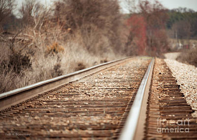 Photograph - Rails by Todd Blanchard
