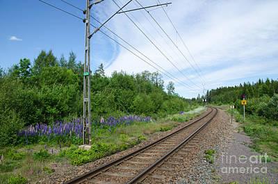 Photograph - Railway In A Summer Landscape by Kennerth and Birgitta Kullman
